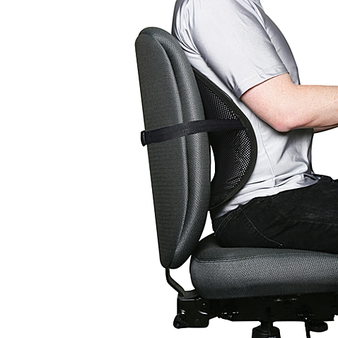 Back and Lumbar Support – Which is best for you?